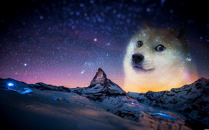 18352-doge-only-doge-without-text